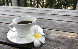 De kop van de koffie en Bloem Frangipani Royalty-vrije Stock Afbeeldingen