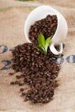 De kop van de koffie met bonen op zak Royalty-vrije Stock Afbeelding