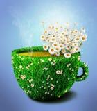 De kop van de kruidthee van gras en bloemen Stock Illustratie