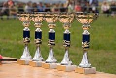 De kop van de sport Royalty-vrije Stock Foto's