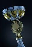 De kop van de trofee Royalty-vrije Stock Afbeelding