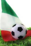 De Kop van de Wereld van het voetbal 2010 Stock Foto's
