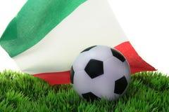 De Kop van de Wereld van het voetbal 2010 Stock Fotografie