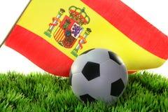 De Kop van de Wereld van het voetbal 2010 Royalty-vrije Stock Foto's