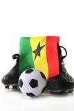 De Kop van de Wereld van het voetbal 2010 Stock Afbeelding