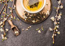 De kop van groene thee met twijg van kers komt op donkere steenachtergrond tot bloei Stock Afbeeldingen