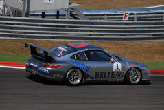 De Kop van Porsche stock afbeelding