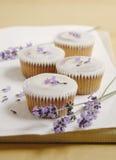 De kopcakes van de lavendel Stock Afbeeldingen