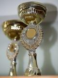 De koppen van de trofee Stock Afbeeldingen