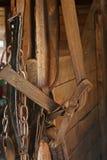 De Kopspijker van het paard Royalty-vrije Stock Fotografie