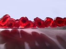 De korrels van een granaatappel royalty-vrije stock foto's