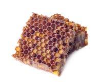 De korrels van het bijenbrood en een stuk honingscellen zijn geïsoleerd op een witte achtergrond Natuurlijke remedie voor immunit stock afbeelding