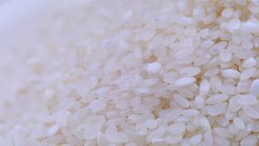 De korrels van ruwe rijst roteren close-up stock footage