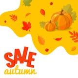 De kortingsbanner van de de herfstverkoop met pompoenen en de herfstbladeren royalty-vrije stock foto's