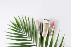 De kosmetische die vlakte legt lipgloss op witte achtergrond met groen tropisch blad wordt ge?soleerd De ruimte van het exemplaar stock foto