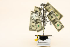 De Kosten van het onderwijs Stock Fotografie