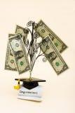 De Kosten van het onderwijs Stock Afbeeldingen