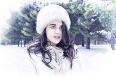 De koude is de kleur van de winter Royalty-vrije Stock Afbeeldingen