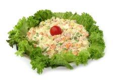 De koude schotel mengde verfraaide salade met knapperige lettuc royalty-vrije stock fotografie