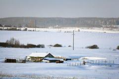 De koude sneeuw Rusland van het de winter boslandschap Royalty-vrije Stock Afbeeldingen