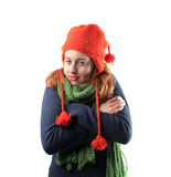 De koude van de winter Stock Foto's