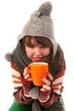 De koude winter Royalty-vrije Stock Fotografie