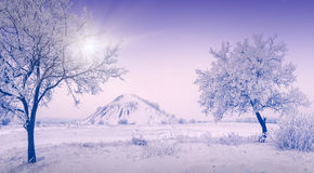 De koude winter morning_3 Royalty-vrije Stock Foto