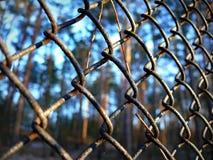 De koude winter van Mesh Fence Stock Fotografie