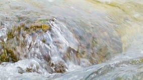 De krab eet algen van rotsen in de overzeese golven stock video