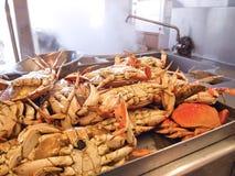 De Krabben van Dungeness in Keuken Stock Afbeeldingen