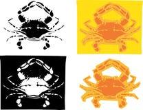 De Krabben van Maryland Stock Afbeelding