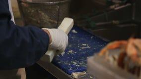 De krabben zijn gekookt in de markt stock videobeelden