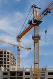 De kranen van de bouw Royalty-vrije Stock Fotografie