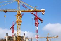 De kranen van de bouw Stock Foto's