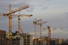 De kranen van de bouw Royalty-vrije Stock Foto's
