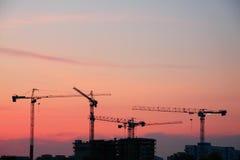 De kranen van de bouw Stock Fotografie