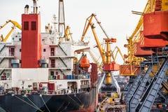 De kranen van de haven Royalty-vrije Stock Afbeelding