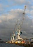 De Kranen van de haven in Rotterdam Stock Foto