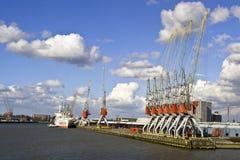 De kranen van de ligplaats in de haven Royalty-vrije Stock Afbeelding