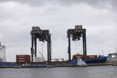 De Kranen van haveneverglades Stock Fotografie
