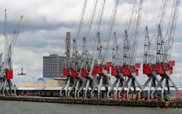 De kranen werken in de haven van Rotterdam Stock Foto's