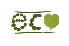 De krantekop van Eco royalty-vrije stock foto's