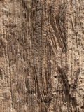 De krassen van de rots Royalty-vrije Stock Fotografie