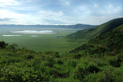 De Krater van Ngongoro Stock Afbeeldingen