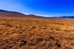 De krater van Ngorongoro in Tanzania Stock Afbeeldingen