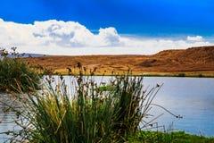 De krater van Ngorongoro in Tanzania Royalty-vrije Stock Fotografie