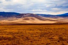 De krater van Ngorongoro in Tanzania Stock Foto's