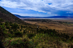 De krater van Ngorongoro in Tanzania Stock Fotografie