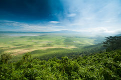 De krater van Ngorongoro, Tanzania Royalty-vrije Stock Foto