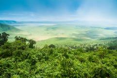 De krater van Ngorongoro, Tanzania Stock Afbeelding